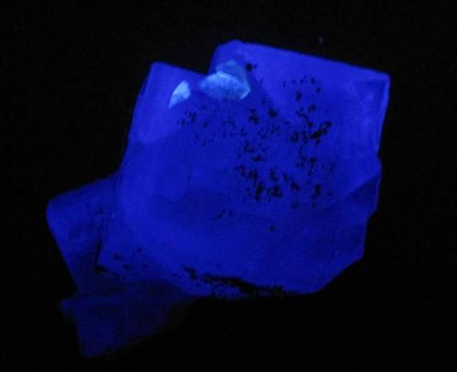 Fluorite with pyrite under longwave UV light  Flickr