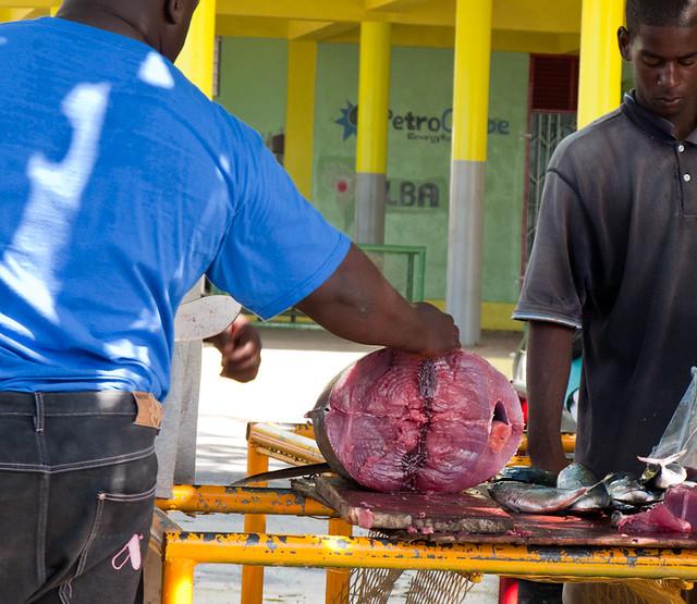 Day 4: Dominica