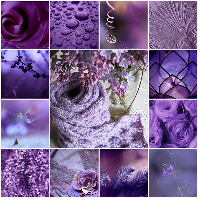 Wallpaper Girl Quotes Purple Collage A Gallery On Flickr