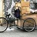 Trabajo informal Bici cartoneros