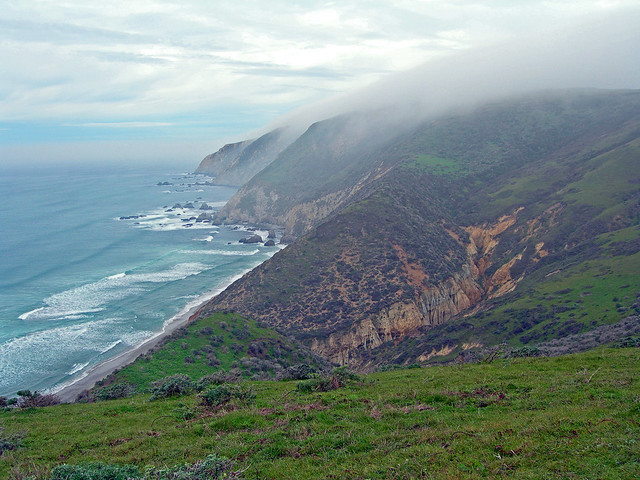 Fog often shrouds the west side of Tomales Point.