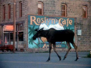 Northern Exposure - A must see