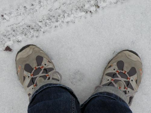 Snow foots
