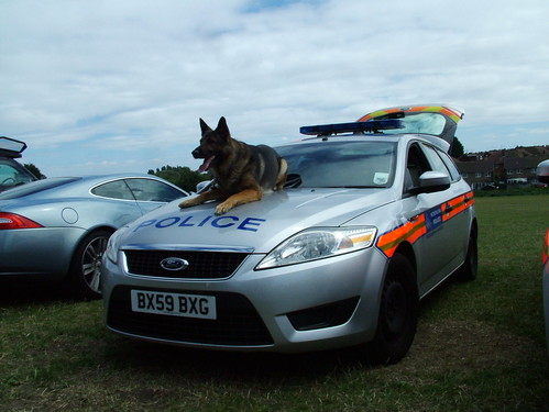 Met Police Dog Section