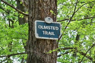 Olmsted Sign