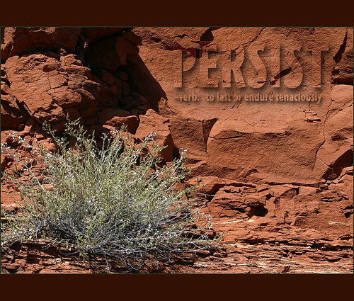 Persist... CC-BY-NC-SA by Dick Jensen on Flickr
