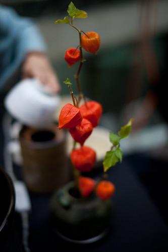 Interesting tea ceremony plant