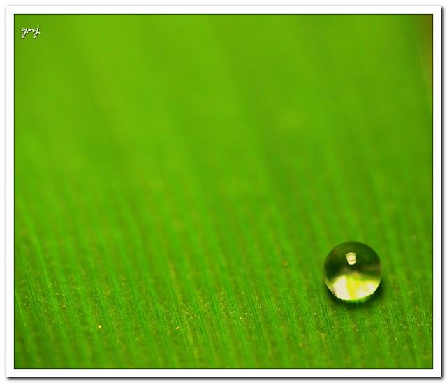 Simplicity Explored  Flickr  Photo Sharing