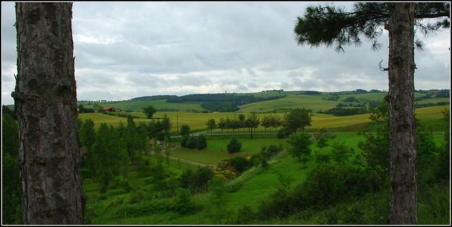 Vertes collines...