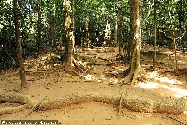 BKK_Angkor 1152
