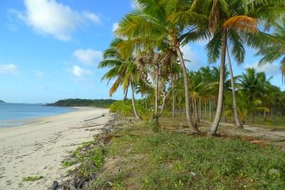 Badu Island Lilly Beach | Flickr - Photo Sharing!