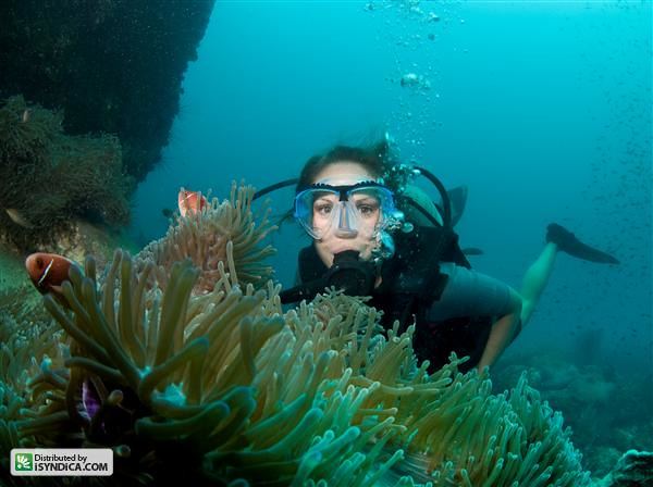 Scuba Diverfeature Flickr Photo Sharing