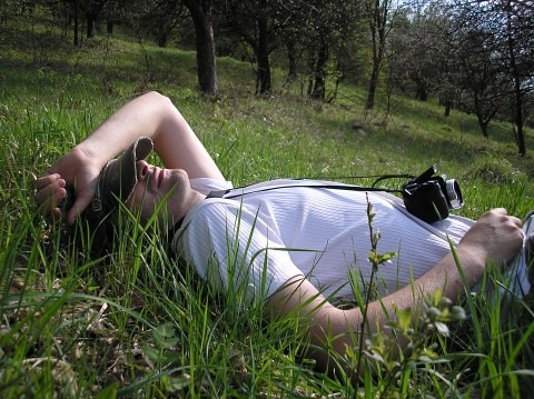 man-relaxing-in-the-grass_8954-480x359