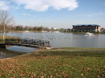 Whittier Pond