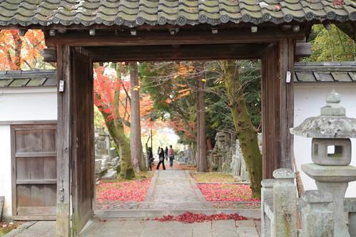 京都 黒谷の紅葉 kurotani@kyoto