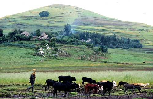 Farming in the highlands of Ethiopia