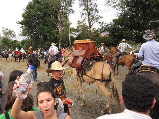 A burroteca is a donkey with custom speakers strapped to it.  This one was blasting vallenato music in the parade.