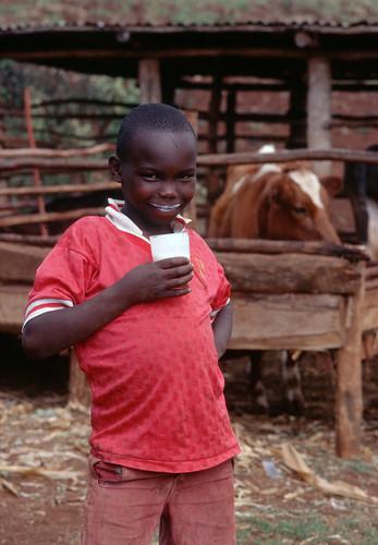 Kenyan boy drinking milk
