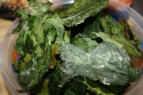 YIP 108.365 Kale Chips