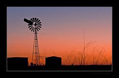 An Oakey Sunset