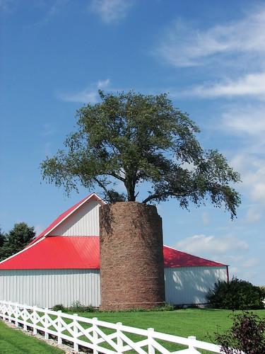 Henry County tree planter
