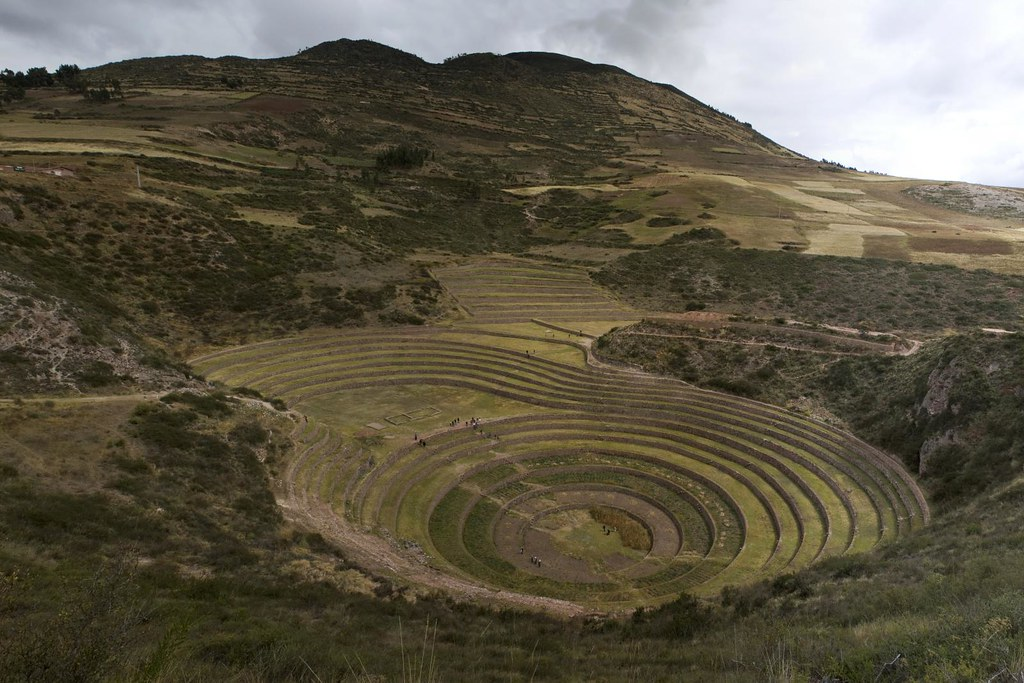 Moray Terracing 2010