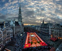 Picture of the Day: Brussels Flower Carpet TwistedSifter