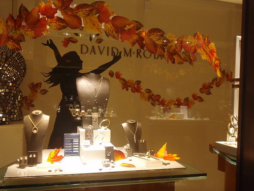 Window Display - DM Robinson - Autumn by c3imaging
