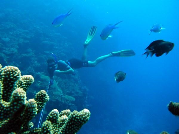 Mike spearfishing in Fiji