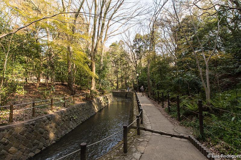 Valle-Todoroki-Tokio-34