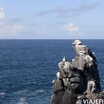 Viajefilos en La Espanola, Galapagos 037