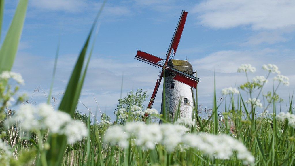 Hunting a windmill
