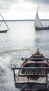 Lamu (40 of 44)