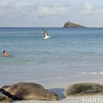 Viajefilos en La Espanola, Galapagos 108