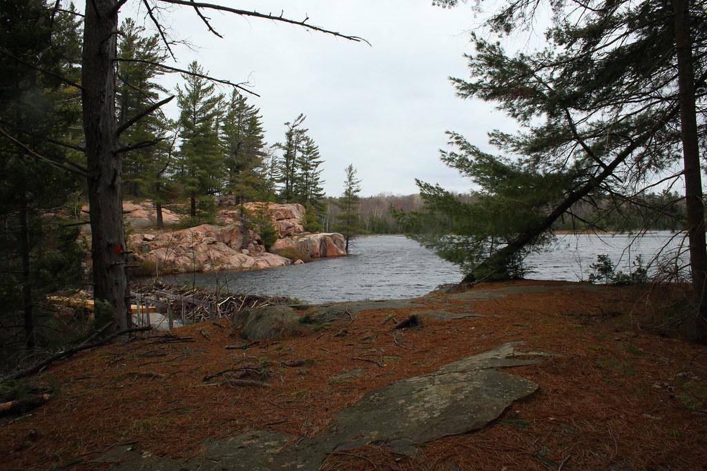 Cranberry Bog 02
