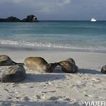 Viajefilos en La Espanola, Galapagos 100