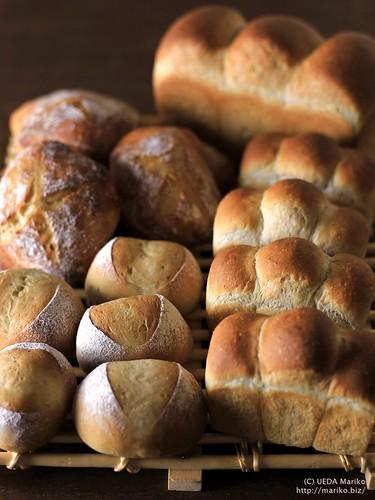 いちご酵母・びわ酵母のパン 20170614-IMG_2524 (2)-1