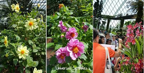 Us - floral