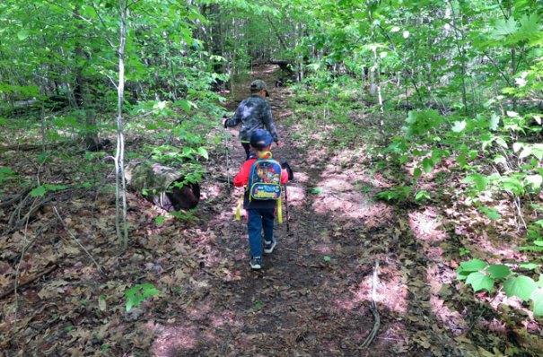 Mt Morgan Trail Start