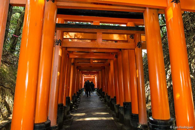 Fushimi-Inari-69