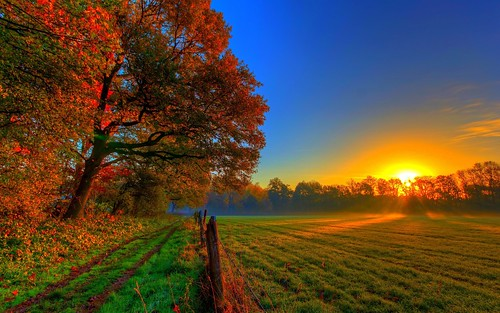 4K Wallpaper High Resolution Nature Hd Images My