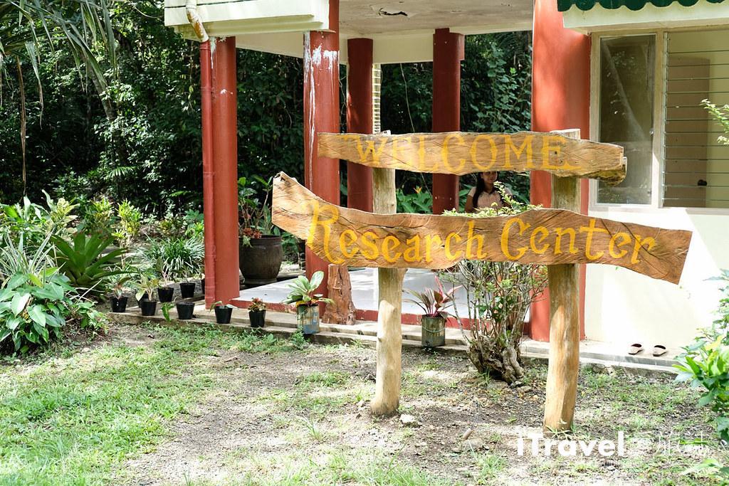 菲律宾薄荷岛眼镜猴保育中心 Tarsier Sanctuary (24)