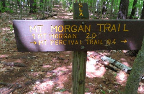 Mt Morgan Trail Sign
