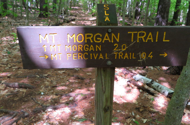 Mt Morgan Trail Sign