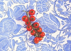 Cherry Tomatoes on Blue & White