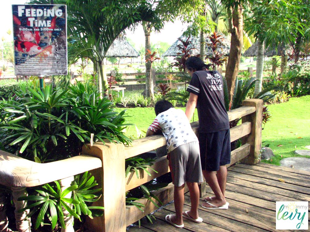 Mount Sea Resort 12_zpsnot8qkdh