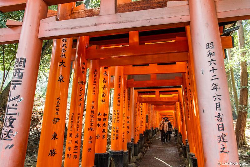 Torii en Fushimi Inari