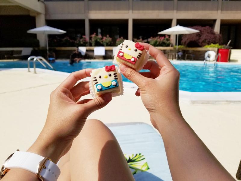 hello-kitty-cakes-sheraton-norfolk-waterside-pool-10