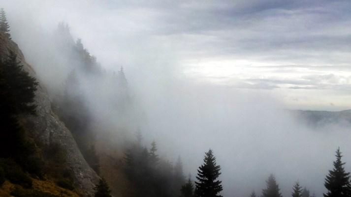prin nori in ciucas