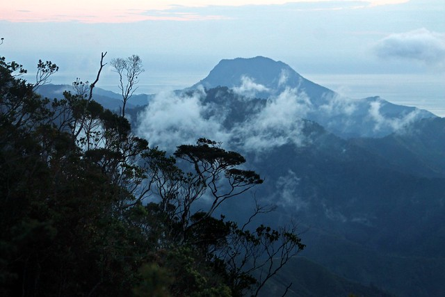 Mt. Hamiguitan Range Wildlife Sanctuary